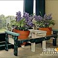 2010-0328-烏樹林 (138).jpg