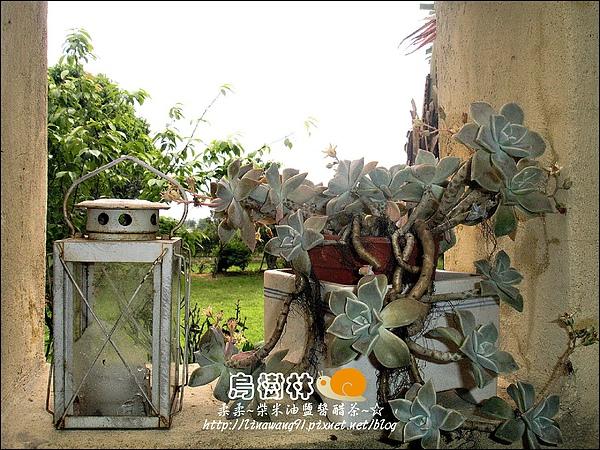 2010-0328-烏樹林 (43).jpg