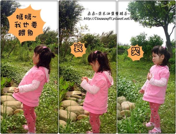 2010-0328-烏樹林-1 (1).jpg