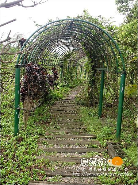 2010-0328-烏樹林 (4).jpg