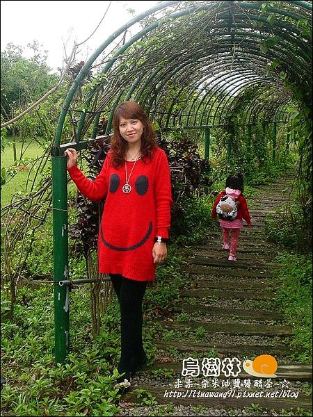 2010-0328-烏樹林 (5).jpg
