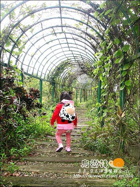 2010-0328-烏樹林 (7).jpg