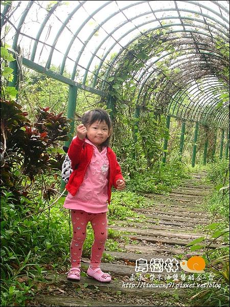 2010-0328-烏樹林 (8).jpg
