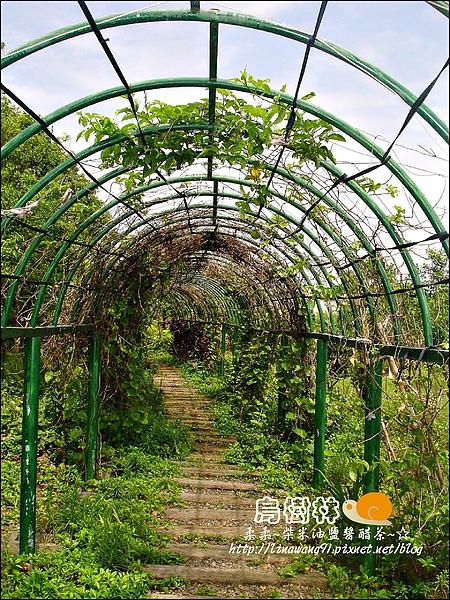 2010-0328-烏樹林 (110).jpg