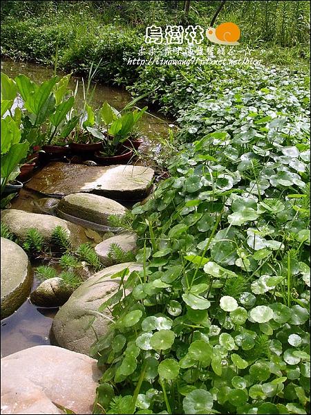 2010-0328-烏樹林 (118).jpg