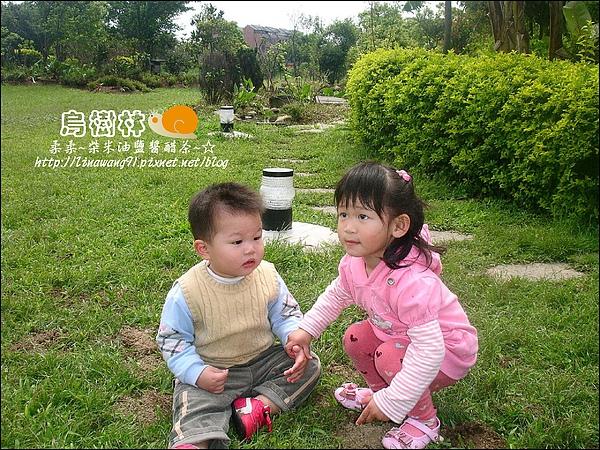 2010-0328-烏樹林 (164).jpg