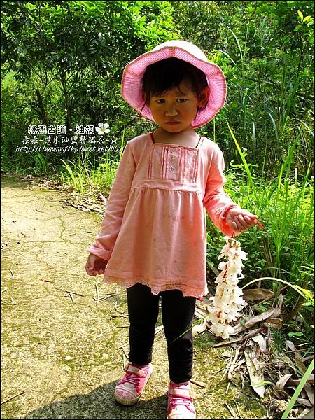 2010-0421-紙糊古道-油桐花之旅 (39).jpg
