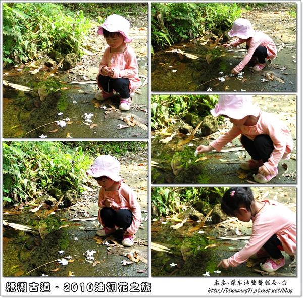 2010-0421-紙糊古道-油桐花之旅 (44).jpg
