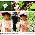 2010-0421-紙糊古道-油桐花之旅 (45).jpg