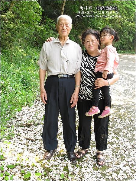 2010-0421-苗栗縣獅潭鄉-相遇桐花林 (1).jpg