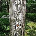 2010-0421-苗栗縣獅潭鄉-相遇桐花林 (7).jpg