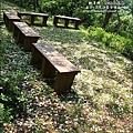 2010-0421-苗栗縣獅潭鄉-相遇桐花林 (14).jpg