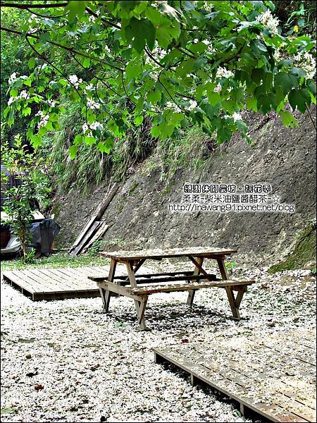 2010-0421-紙湖農場-油桐花之旅 (4).jpg