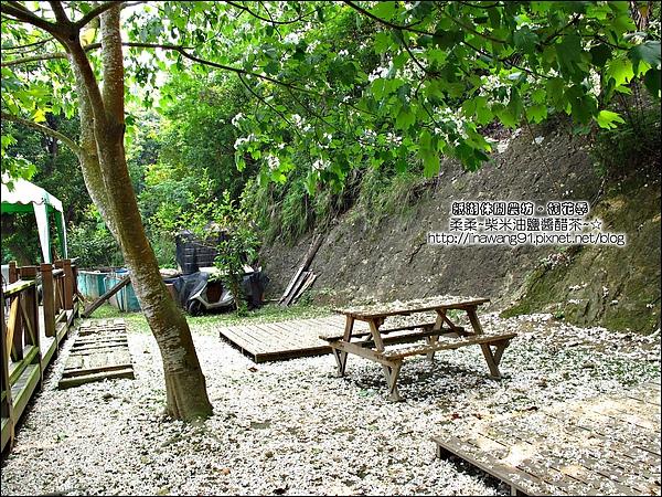 2010-0421-紙湖農場-油桐花之旅 (9).jpg