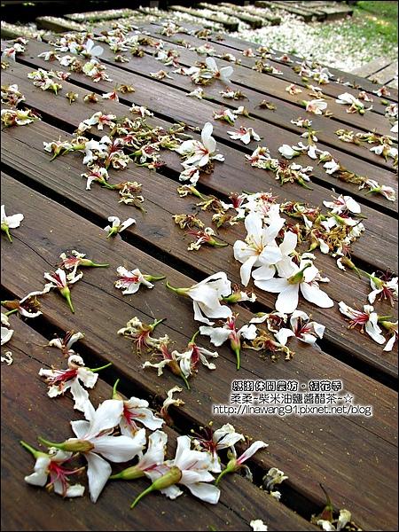 2010-0421-紙湖農場-油桐花之旅 (11).jpg