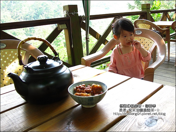 2010-0421-紙湖農場-油桐花之旅 (23).jpg