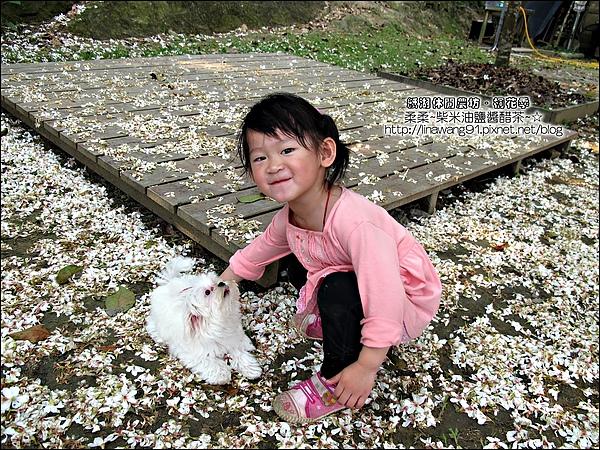 2010-0421-紙湖農場-油桐花之旅 (26).jpg