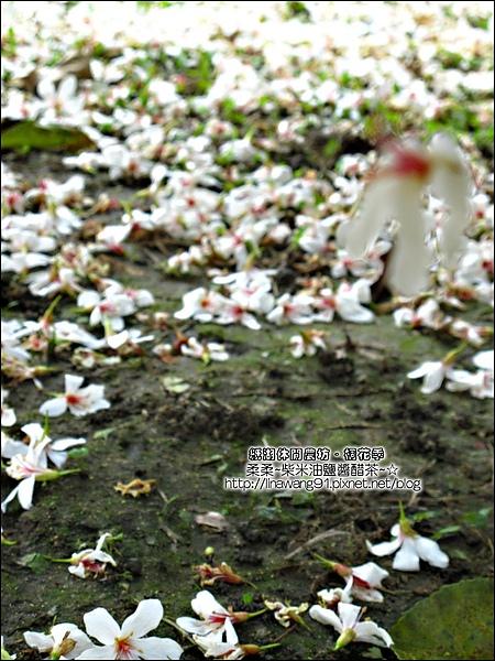 2010-0421-紙湖農場-油桐花之旅 (29).jpg