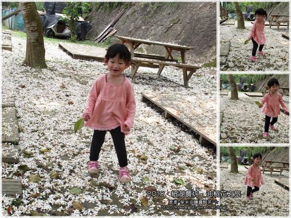 2010-0421-紙湖農場-油桐花之旅 (40).jpg