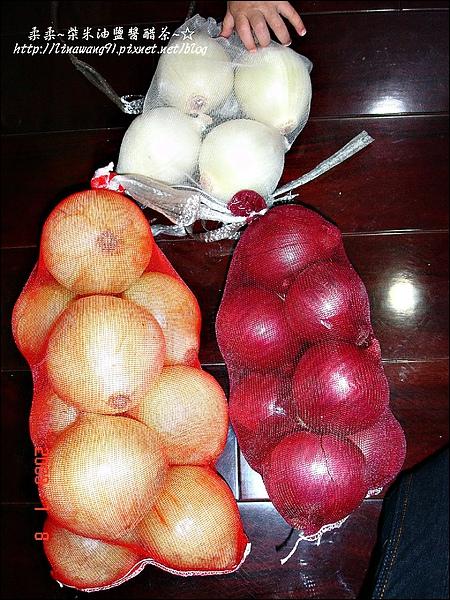 2009-0108 -屏東最有名的洋蔥 (22).jpg