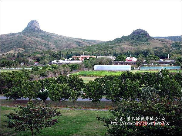2009-0108 -屏東-民宿外的風景.jpg