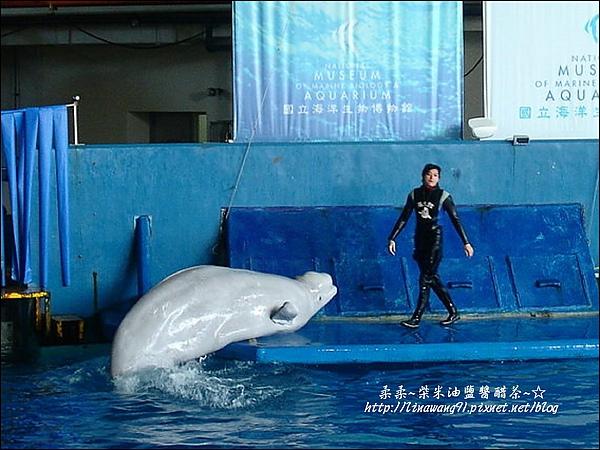 2009-0108 -屏東-海洋館 (1).jpg