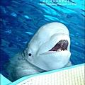 2009-0108 -屏東-海洋館 (3).jpg