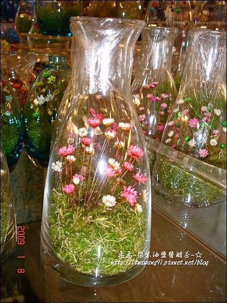 2009-0108 -屏東-海洋館 (4).jpg