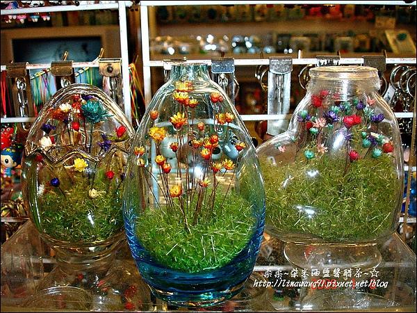 2009-0108 -屏東-海洋館 (5).jpg