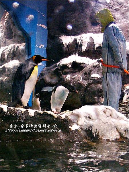 2009-0108 -屏東-海洋館 (15).jpg