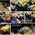 2009-0108 -屏東-海洋館 (23).jpg