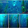 2009-0108 -屏東-海洋館 (25).jpg