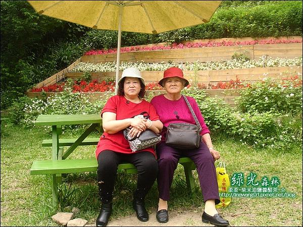 2010-0324-桃園-綠光森林 (19).jpg