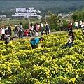 2010-1114-2010-銅鑼-杭菊芋頭節 (22).jpg