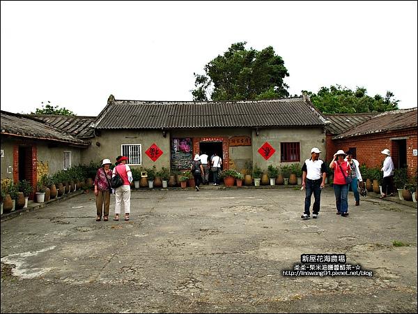 2010-0620-新屋花海農場 (13).jpg