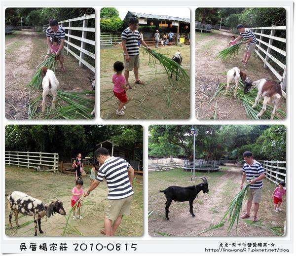 吳厝楊家莊-2010-0815 (58).jpg