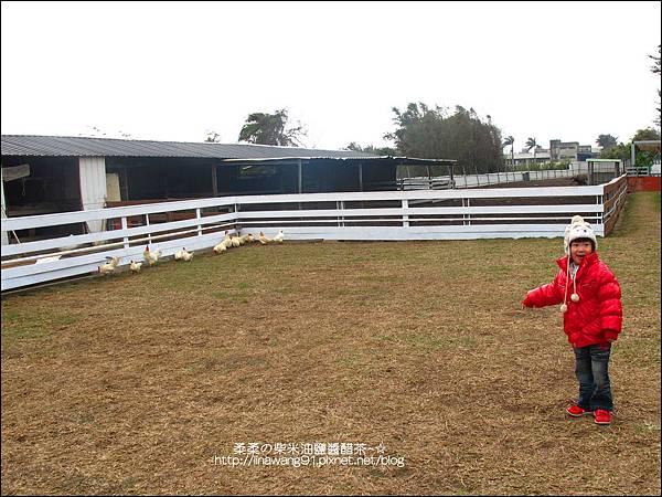 2011-0130-新竹-巷弄田園 (7).jpg