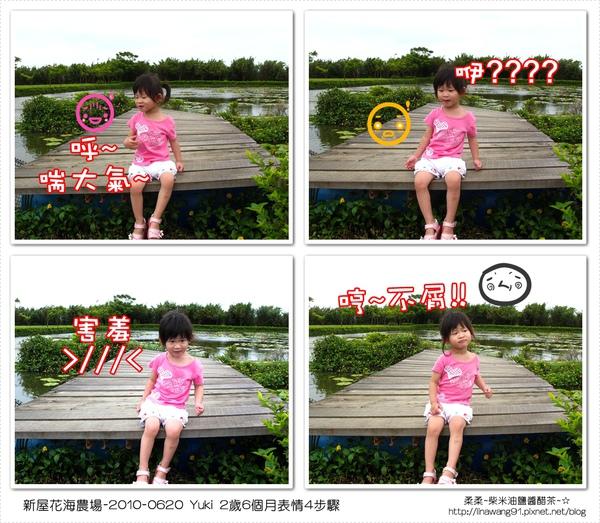 2010-0620-新屋花海農場 (24).jpg