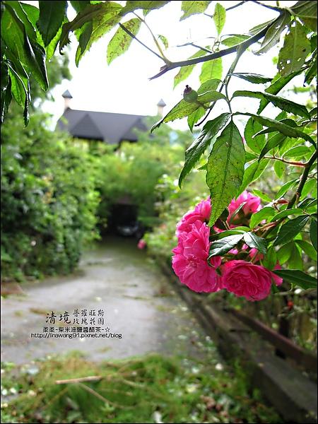 普羅旺斯玫瑰莊園清晨 -2010-0920 (17).jpg