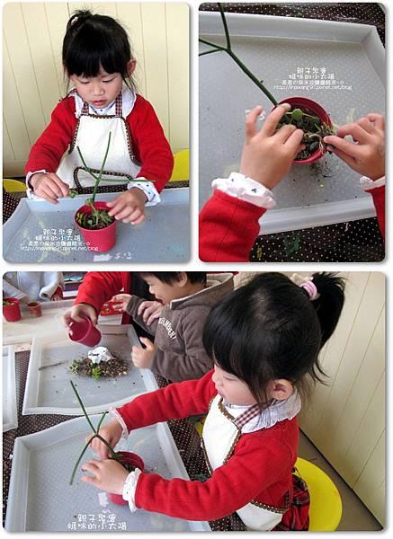 媽咪小太陽親子聚會-2011-0110-綠色-多肉植物 (28).jpg