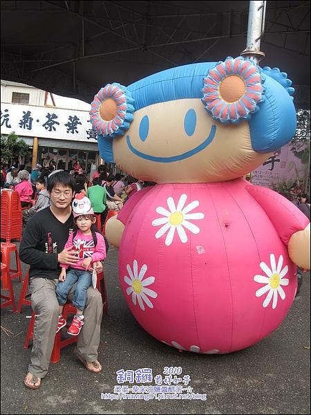 2010-1114-2010-銅鑼-杭菊芋頭節 (8).jpg