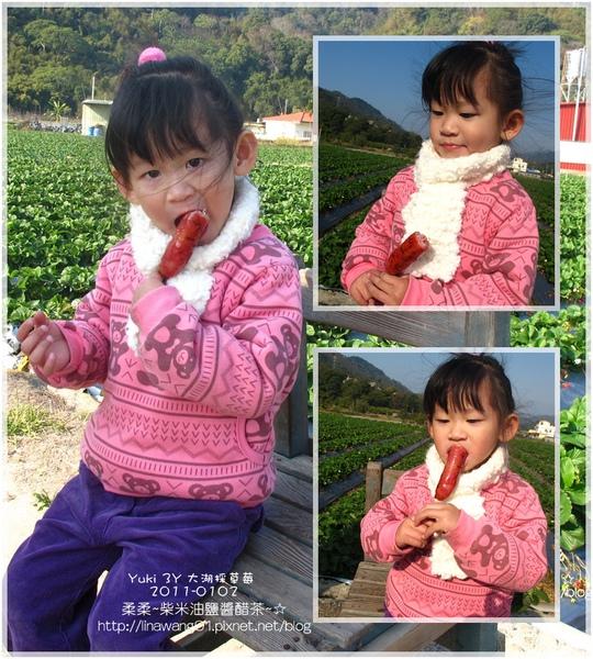 2011-0102-大湖採草莓 (29).jpg