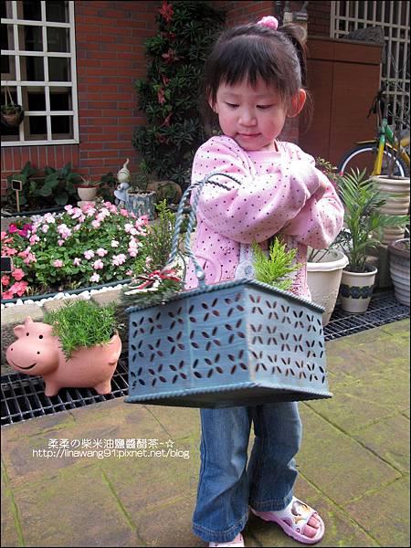 2011-0314-仙人掌組合盆栽 (9).jpg