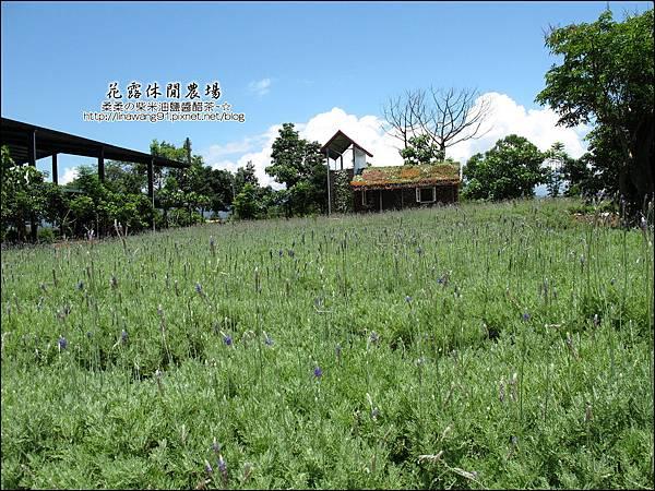 2010-0531-苗栗卓蘭-花露休閒農場 (33).jpg