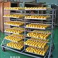 2010-1026~1102-新埔-金漢柿餅 (6).jpg
