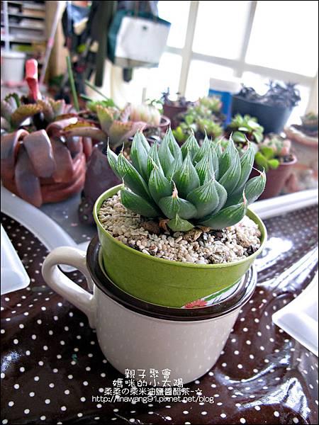 媽咪小太陽親子聚會-2011-0110-綠色-多肉植物 (5).jpg