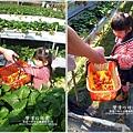 2011-0226-灣潭玫瑰草莓園 (58).jpg