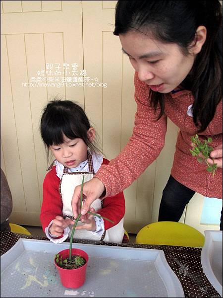 媽咪小太陽親子聚會-2011-0110-綠色-多肉植物 (10).jpg