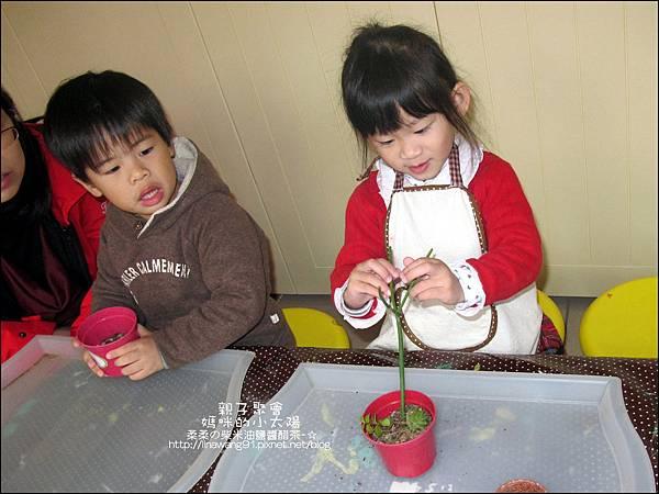 媽咪小太陽親子聚會-2011-0110-綠色-多肉植物 (8).jpg