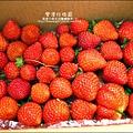 2011-0226-灣潭玫瑰草莓園 (17).jpg